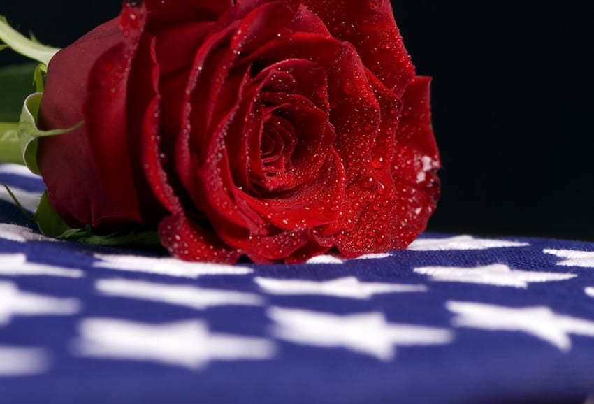 What benefits are available to Surviving Spouses of Veterans?