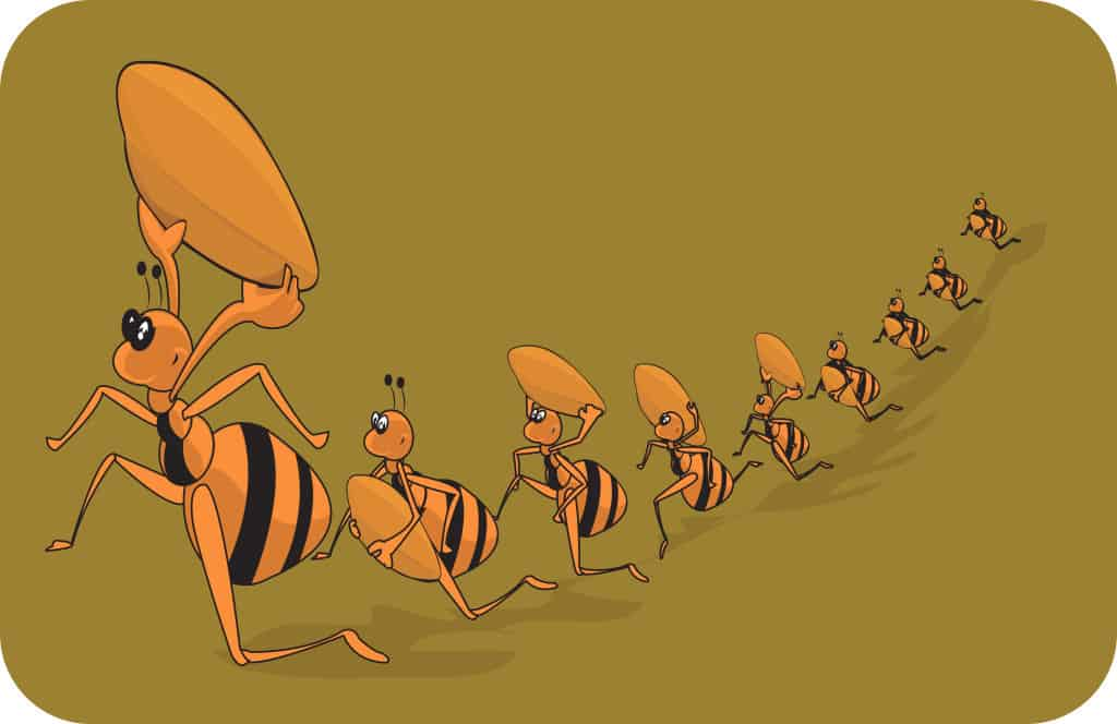 Like Ants at a Picnic, Junk Science Invades MOST C and P Exams.